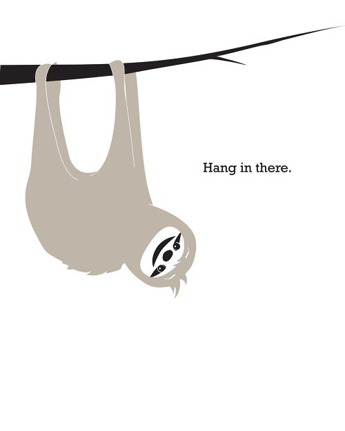 Digital Print - Hang in There